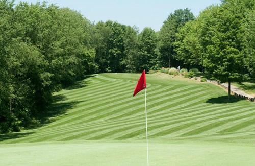 https://avemariahome.org/wp-content/uploads/2018/08/features-news-golf-tournament.jpg